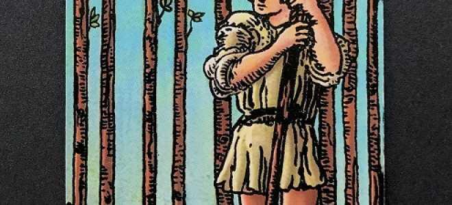 Значение аркана Таро Девятка Жезлов (9 жезлов)